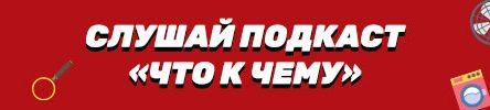 zachem-lise-takoj-pushistyj-hvost-6ea5428